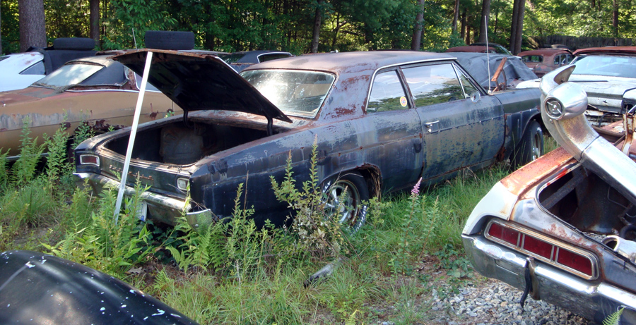 Best Auto Salvage Yards For Classic Cars In Dallas Texas